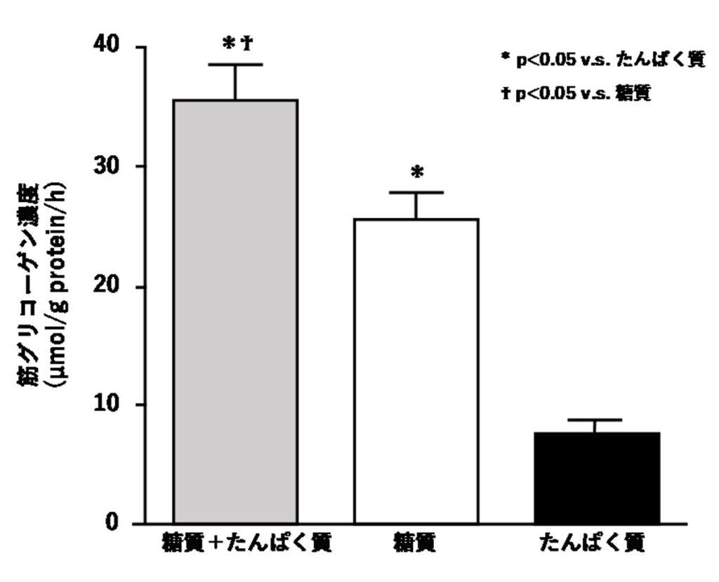 糖質とたんぱく質の同時摂取によるグリコーゲン回復(疲労回復)