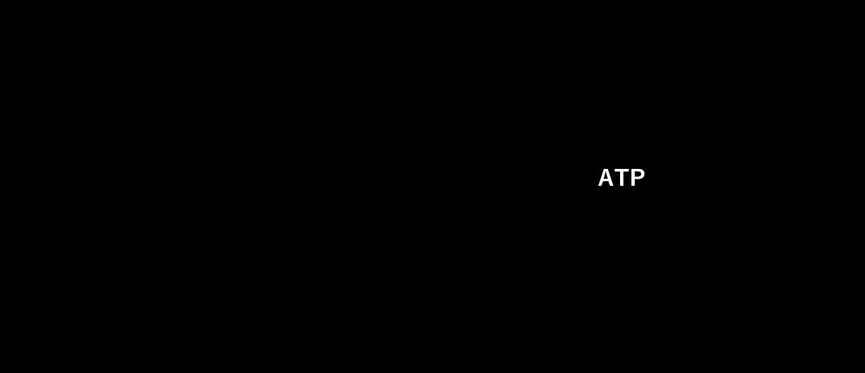 図3. 解糖系におけるATP産生
