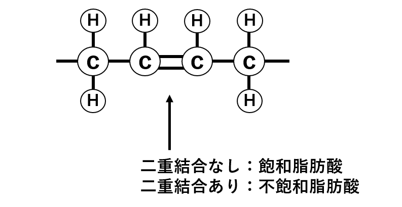 図1. 飽和脂肪酸と不飽和脂肪酸