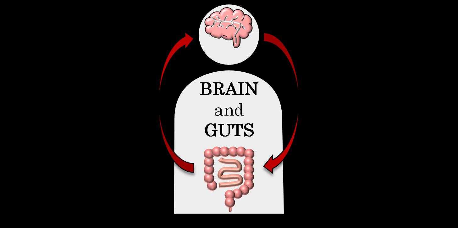 「腸脳相関」もしくは「脳腸相関」