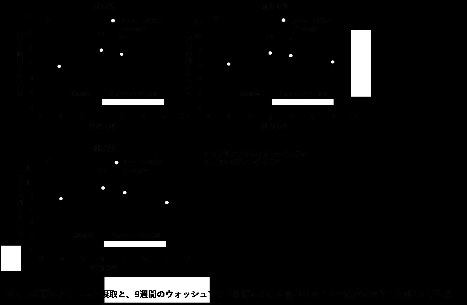アラニン 効果 ベータ